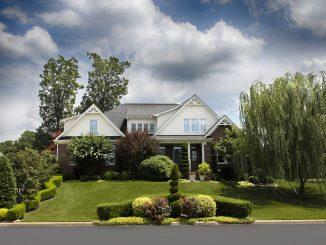tips-hiring-landscaping-company